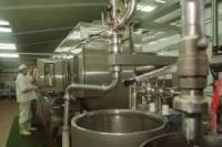 Norwegia praca od zaraz w mleczarni dla technologów żywienia